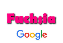 Google - Fuchsia OS