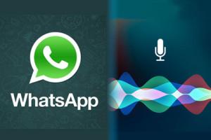WhatsApp und Siri
